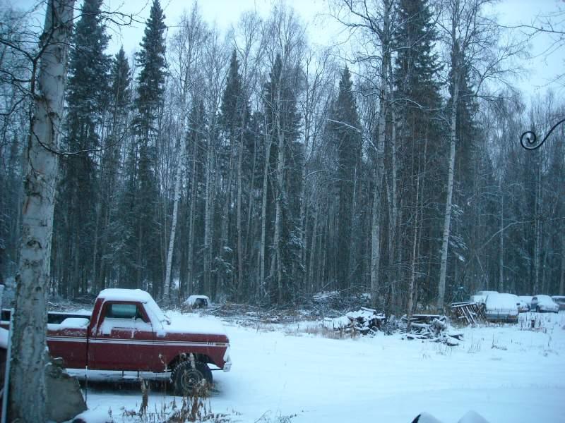 Nov-5th-2013-Snow-1